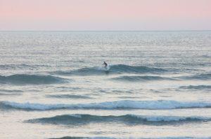dawnie1 300x199 - dawnie angie surfing